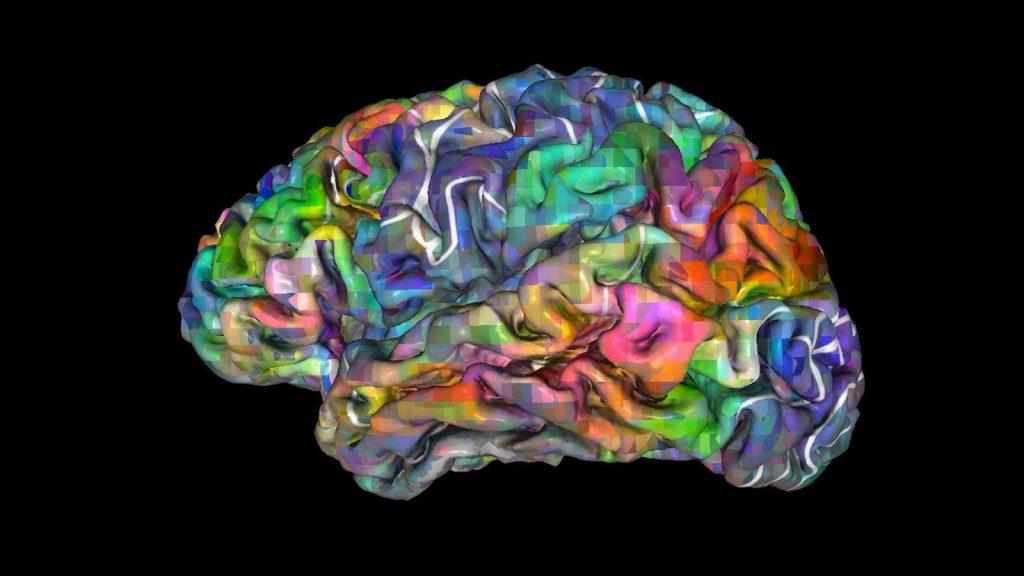 Neuroscientists Read Brain